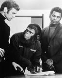 rebelión de los simios, La Fotografía