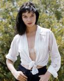 Elsa Martinelli Photo