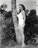 Creature from the Black Lagoon - Photo