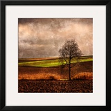 Van Gough's Mind Framed Photographic Print by Philippe Sainte-Laudy