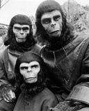 Battle for the Planet of the Apes Photo