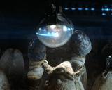 Alien– Das unheimliche Wesen aus einer fremden Welt Foto