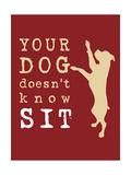 Doesn't Know Sit Affiche par  Dog is Good