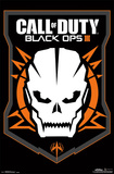 Black Ops 3 - Skull Posters
