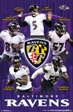 Baltimore Ravens - Team2015 Photo
