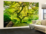 Japanese Maple Tree Mural