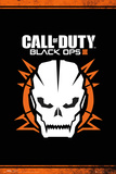 Call Of Duty Black Ops 3 Skull Poster