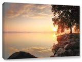 Renewal, Gallery-Wrapped Canvas Stretched Canvas Print by Steve Ainsworth