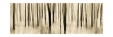 Mystic Forest 1252 Panoramic Photographic Print by Rica Belna