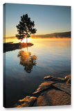Witness To The Dawn, Gallery-Wrapped Canvas Stretched Canvas Print by Steve Ainsworth