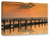 Silver And Gold, Gallery-Wrapped Canvas Stretched Canvas Print by Steve Ainsworth