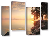 Renewal, 4 Piece Gallery-Wrapped Canvas Staggered Set Prints by Steve Ainsworth