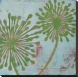 Rhythms II - 3L Stretched Canvas Print by Sally Bennett Baxley