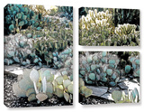 Botanical Garden, 3 Piece Gallery-Wrapped Canvas Flag Set Print by Linda Parker