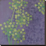 Rhythms II - 2R Stretched Canvas Print by Sally Bennett Baxley