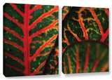 Croton Abstract, 2 Piece Gallery-Wrapped Canvas Set Gallery Wrapped Canvas Set by Kathy Yates