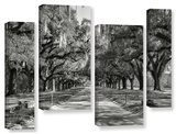 Live Oak Avenue Ii, 4 Piece Gallery-Wrapped Canvas Staggered Set Prints by Steve Ainsworth