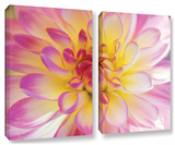All Dahled Up, 2 Piece Gallery-Wrapped Canvas Set Posters by Kathy Yates
