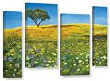 Golden Meadow, 4 Piece Gallery-Wrapped Canvas Staggered Set Gallery Wrapped Canvas Set by Marina Petro