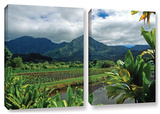 A Taro Farm In Hanalei, 2 Piece Gallery-Wrapped Canvas Set Posters by Kathy Yates