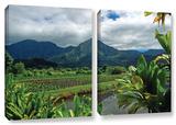 A Taro Farm In Hanalei, 2 Piece Gallery-Wrapped Canvas Set Gallery Wrapped Canvas Set by Kathy Yates
