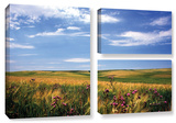 Field Of Dreams, 3 Piece Gallery-Wrapped Canvas Flag Set Gallery Wrapped Canvas Set by Kathy Yates