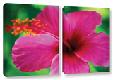 Maui Pink Hibiscus, 2 Piece Gallery-Wrapped Canvas Set Gallery Wrapped Canvas Set by Kathy Yates
