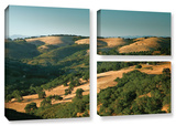 Hills Of California, 3 Piece Gallery-Wrapped Canvas Flag Set Gallery Wrapped Canvas Set by Steve Ainsworth