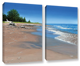 Driftwood Beach, 2 Piece Gallery-Wrapped Canvas Set Poster by Ken Kirsh