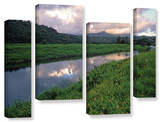 Hanalei River Reflections, 4 Piece Gallery-Wrapped Canvas Staggered Set Prints by Kathy Yates