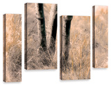Desert Grasses Ii , 4 Piece Gallery-Wrapped Canvas Staggered Set Art by Linda Parker