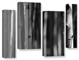 A Way Out, 4 Piece Gallery-Wrapped Canvas Staggered Set Gallery Wrapped Canvas Set by Mark Ross