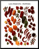 Peppers Mounted Print