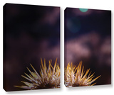 Obviousness Has Its Advantages, 2 Piece Gallery-Wrapped Canvas Set Gallery Wrapped Canvas Set by Mark Ross