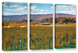 Vineyard In Autumn, 3 Piece Gallery-Wrapped Canvas Set Gallery Wrapped Canvas Set by Steve Ainsworth