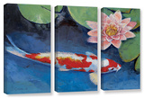 Koi And Water Lily, 3 Piece Gallery-Wrapped Canvas Set Gallery Wrapped Canvas Set by Michael Creese