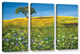 Golden Meadow, 3 Piece Gallery-Wrapped Canvas Set Gallery Wrapped Canvas Set by Marina Petro