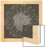 Chalk Bloom 2 Wood Print by Connor Adams
