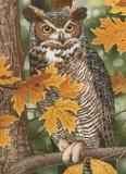 Autumn Owl 1000 Piece Puzzle Jigsaw Puzzle