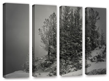 10,000 Feet Of Silence, 4 Piece Gallery-Wrapped Canvas Set Poster by Mark Ross