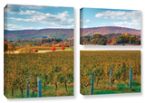 Vineyard In Autumn, 3 Piece Gallery-Wrapped Canvas Flag Set Gallery Wrapped Canvas Set by Steve Ainsworth