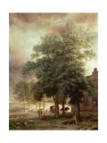 Landscape with Carriage or House Beyond the Trees Giclee Print by Paulus Potter