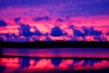 Cranberry Bog Sunset Giclee Print by Jobe Waters
