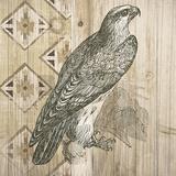 Natural History Lodge V Poster par Elyse DeNeige