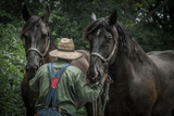 Farmer with Two Horses Photographic Print by Stephen Arens