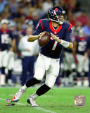 Brian Hoyer 2015 Action Photo