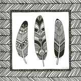 Geo Feathers Square II Prints by Sara Zieve Miller