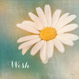 Daisy Wishes Prints by Sue Schlabach