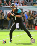 Chad Henne 2014 Action Photo
