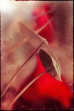 Red Flowers Photographic Print by Mia Friedrich
